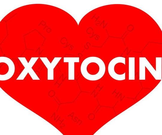 Oksitosin nedir ? Oksitosin hormonu ne işe yarar ?