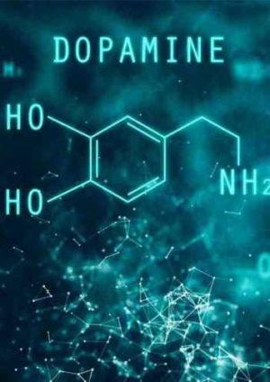dopamin nedir dopamin hormonu ne işe yarar